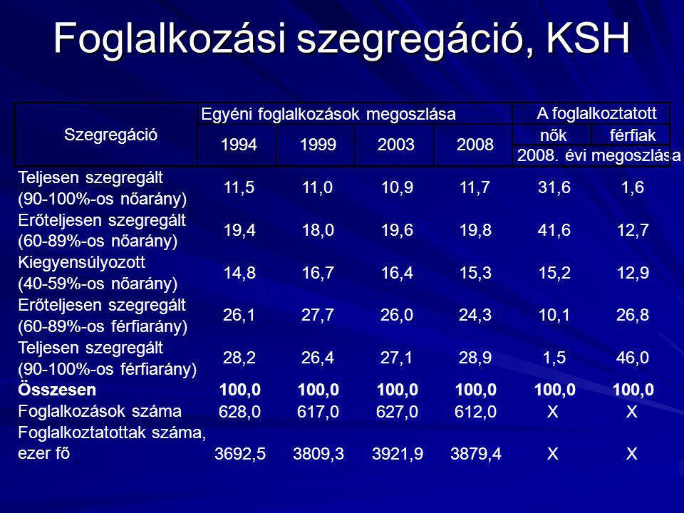 Foglalkozási szegregáció, KSH