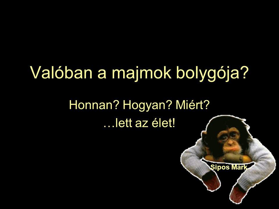 Valóban a majmok bolygója
