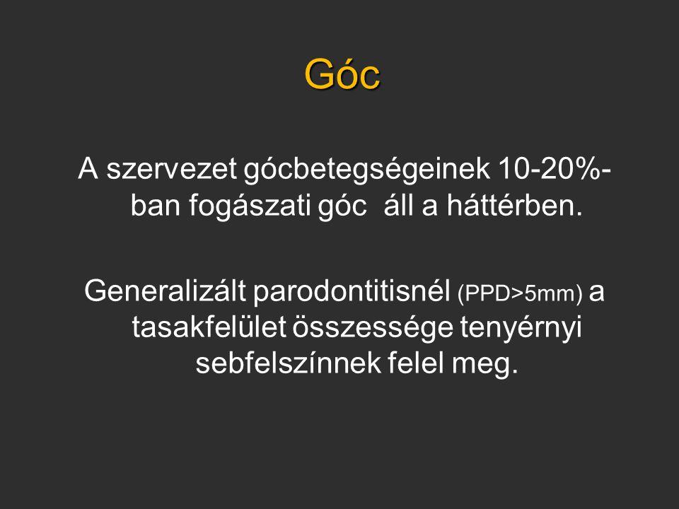Góc A szervezet gócbetegségeinek 10-20%- ban fogászati góc áll a háttérben.