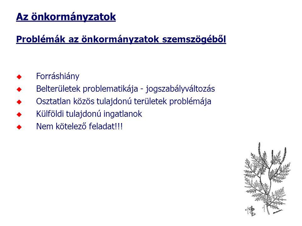 Az önkormányzatok Problémák az önkormányzatok szemszögéből Forráshiány