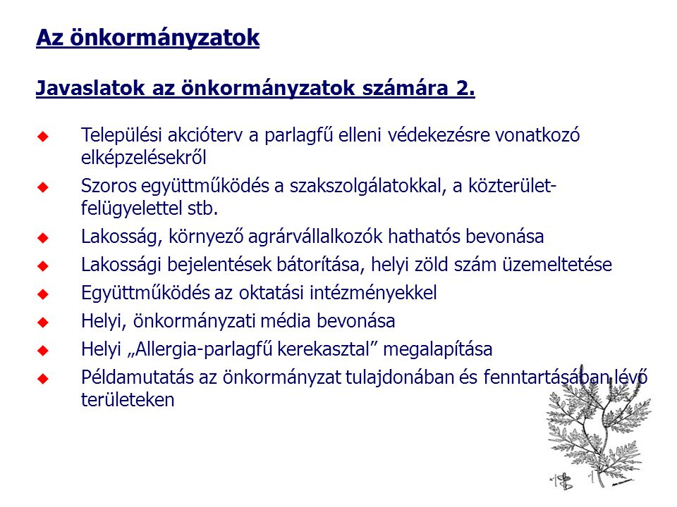 Az önkormányzatok Javaslatok az önkormányzatok számára 2.