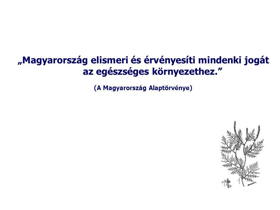 (A Magyarország Alaptörvénye)