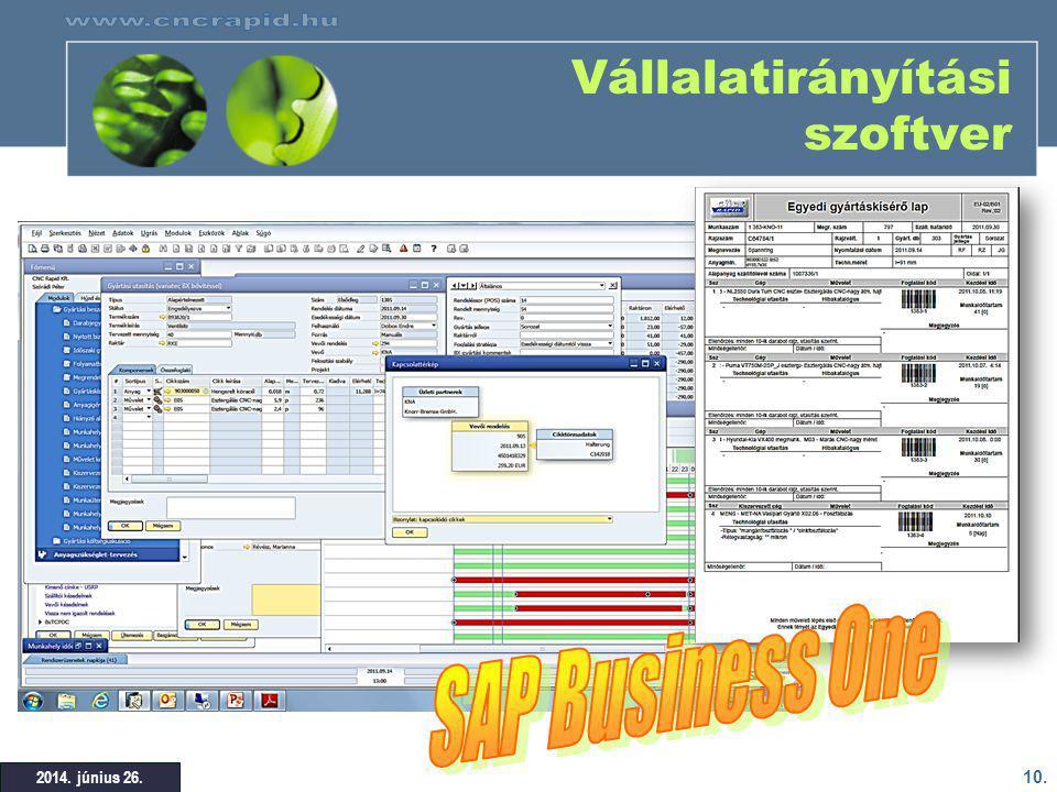 Vállalatirányítási szoftver