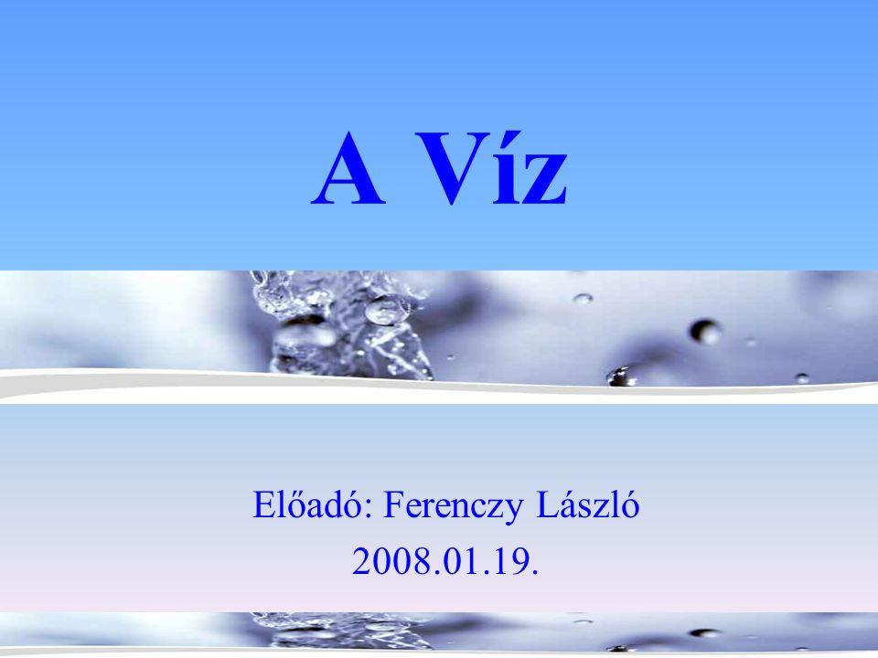 Előadó: Ferenczy László 2008.01.19.