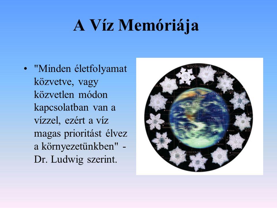 A Víz Memóriája