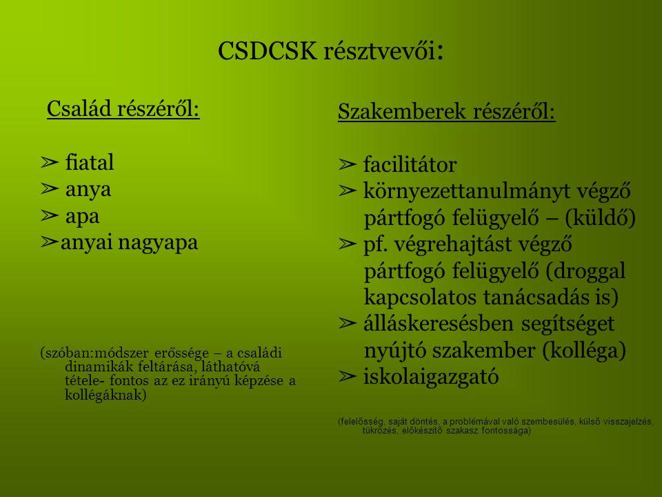 CSDCSK résztvevői: Család részéről: Szakemberek részéről: ➢ fiatal