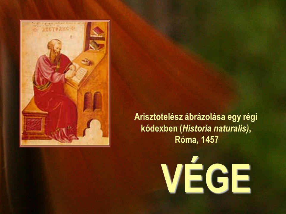 Arisztotelész ábrázolása egy régi kódexben (Historia naturalis), Róma, 1457