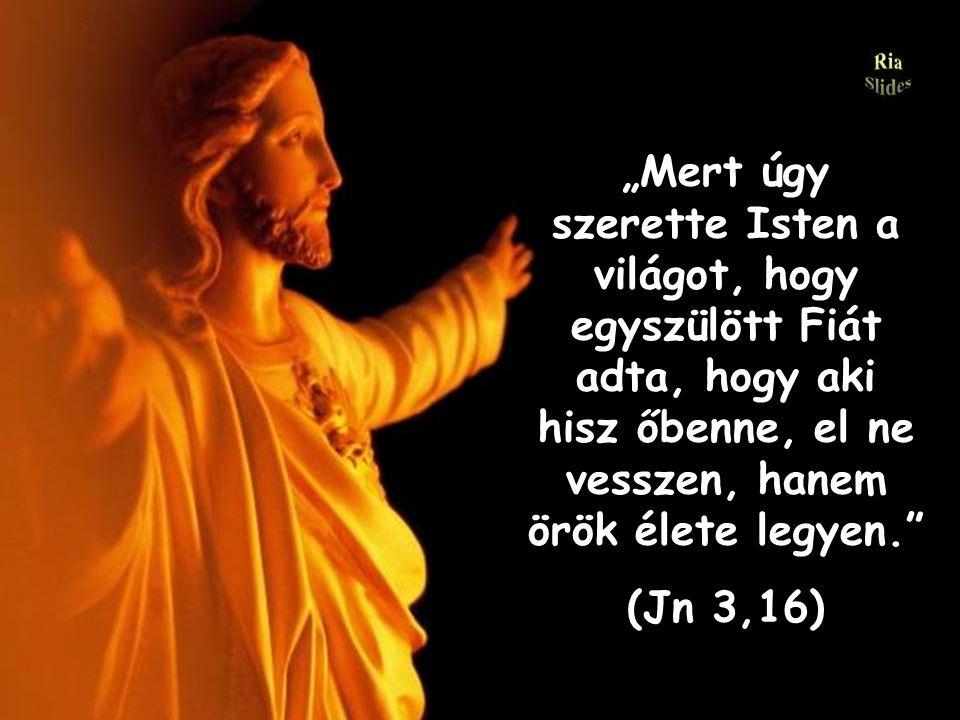 """""""Mert úgy szerette Isten a világot, hogy egyszülött Fiát adta, hogy aki hisz őbenne, el ne vesszen, hanem örök élete legyen."""