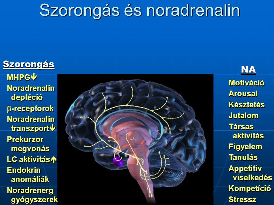 Szorongás és noradrenalin