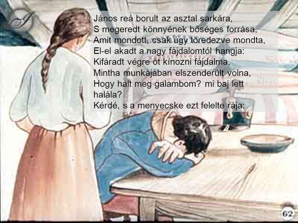 János reá borult az asztal sarkára, S megeredt könnyének bőséges forrása, Amit mondott, csak úgy töredezve mondta, El-el akadt a nagy fájdalomtól hangja: Kifáradt végre öt kínozni fájdalma, Mintha munkájában elszenderült volna, Hogy halt meg galambom.