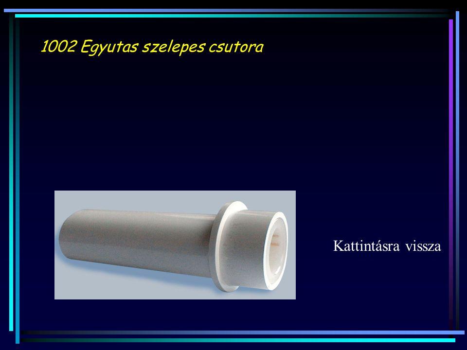 1002 Egyutas szelepes csutora