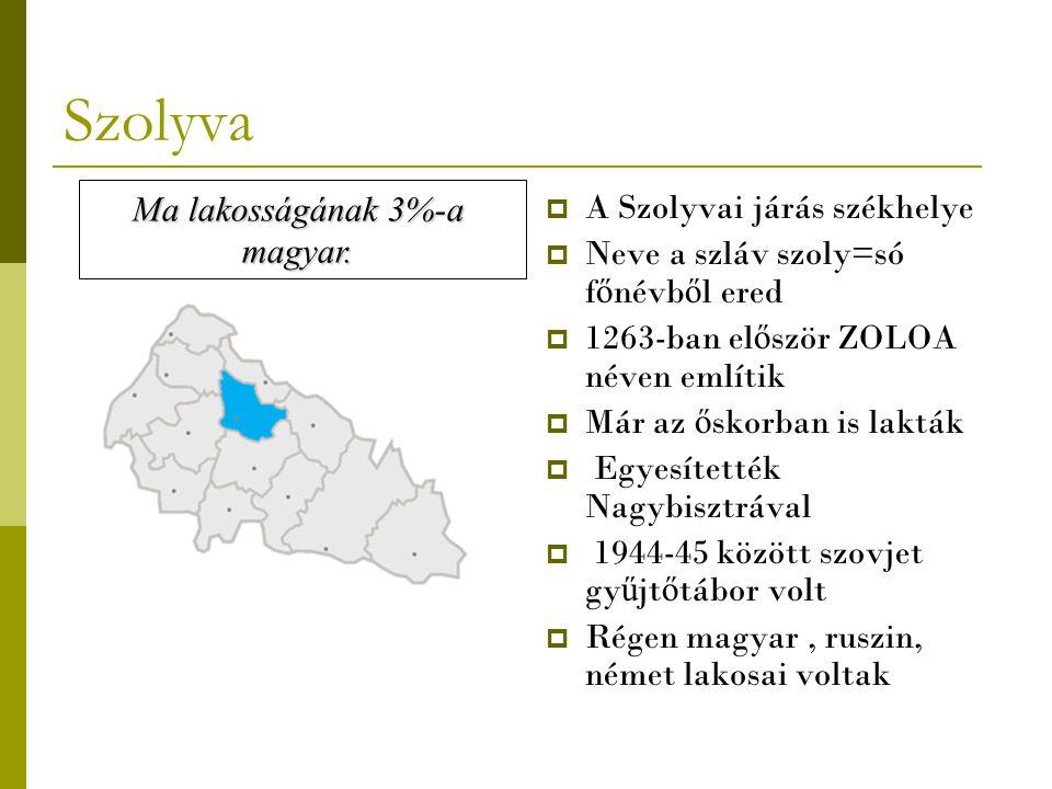 Szolyva Ma lakosságának 3%-a A Szolyvai járás székhelye magyar.