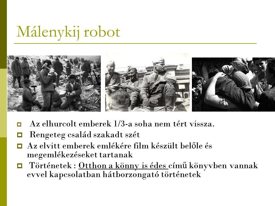 Málenykij robot Rengeteg család szakadt szét