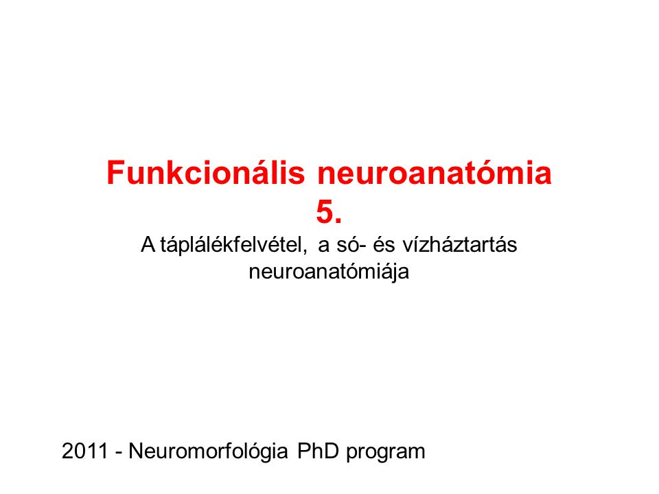Funkcionális neuroanatómia
