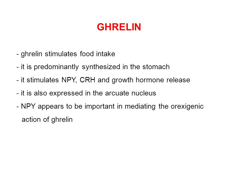 GHRELIN - ghrelin stimulates food intake