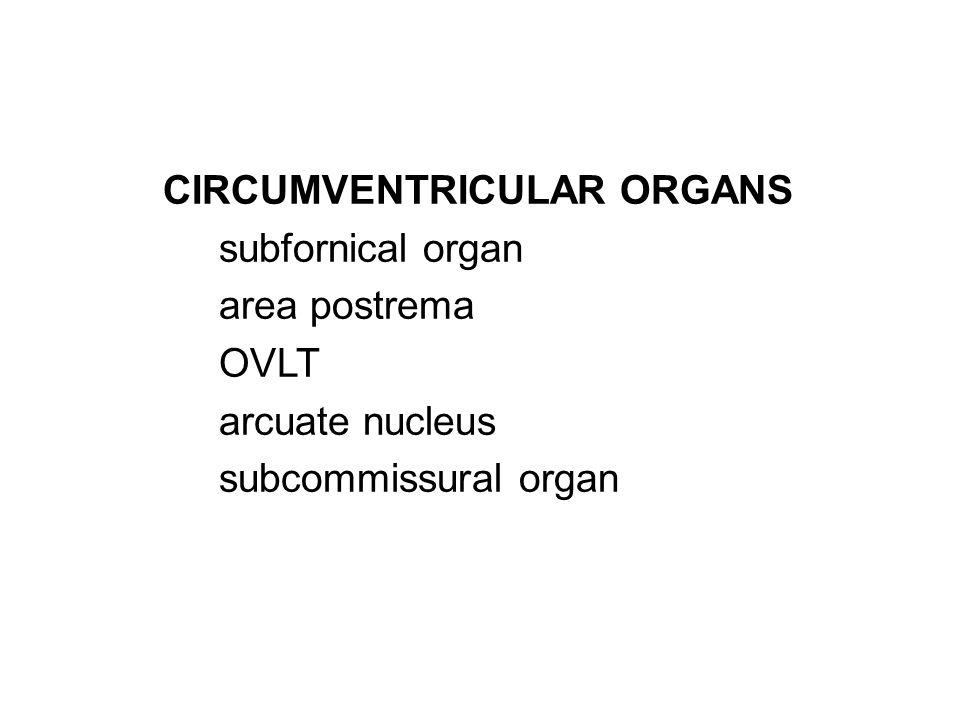 CIRCUMVENTRICULAR ORGANS