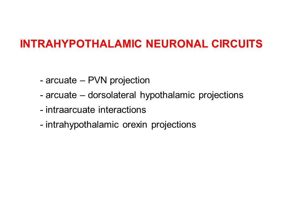 INTRAHYPOTHALAMIC NEURONAL CIRCUITS