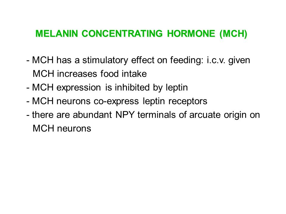 MELANIN CONCENTRATING HORMONE (MCH)