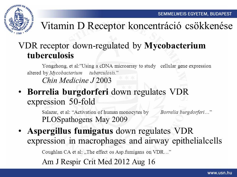 Vitamin D Receptor koncentráció csökkenése