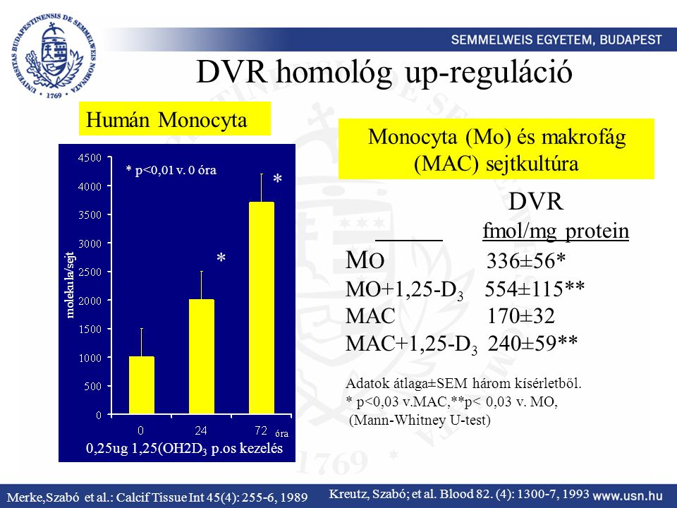 DVR homológ up-reguláció