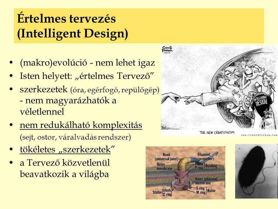 Értelmes tervezés (Intelligent Design)