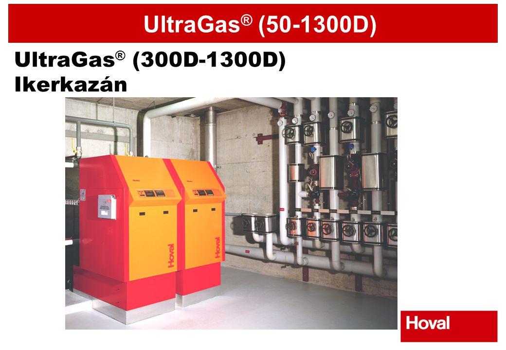 UltraGas® (300D-1300D) Ikerkazán