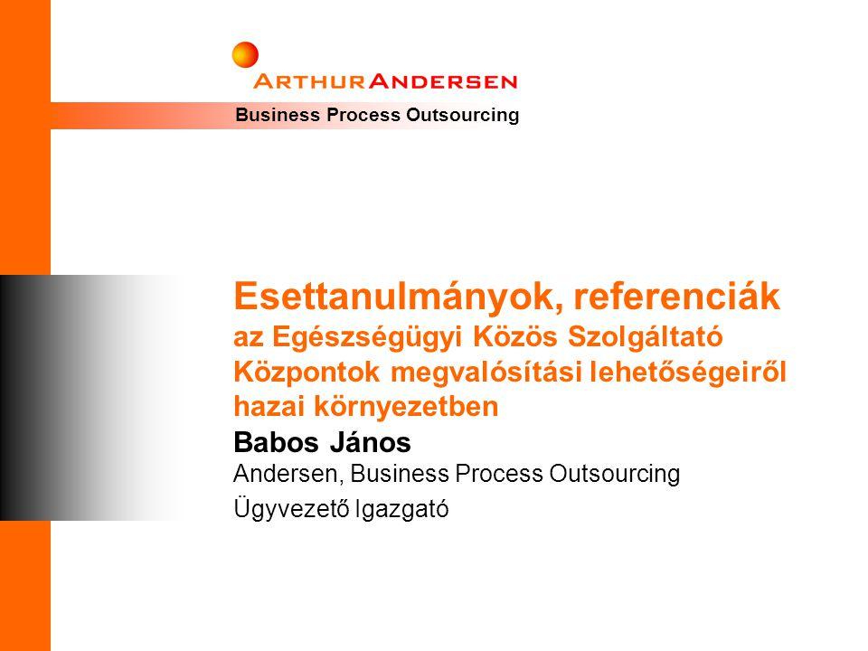 Babos János Andersen, Business Process Outsourcing Ügyvezető Igazgató
