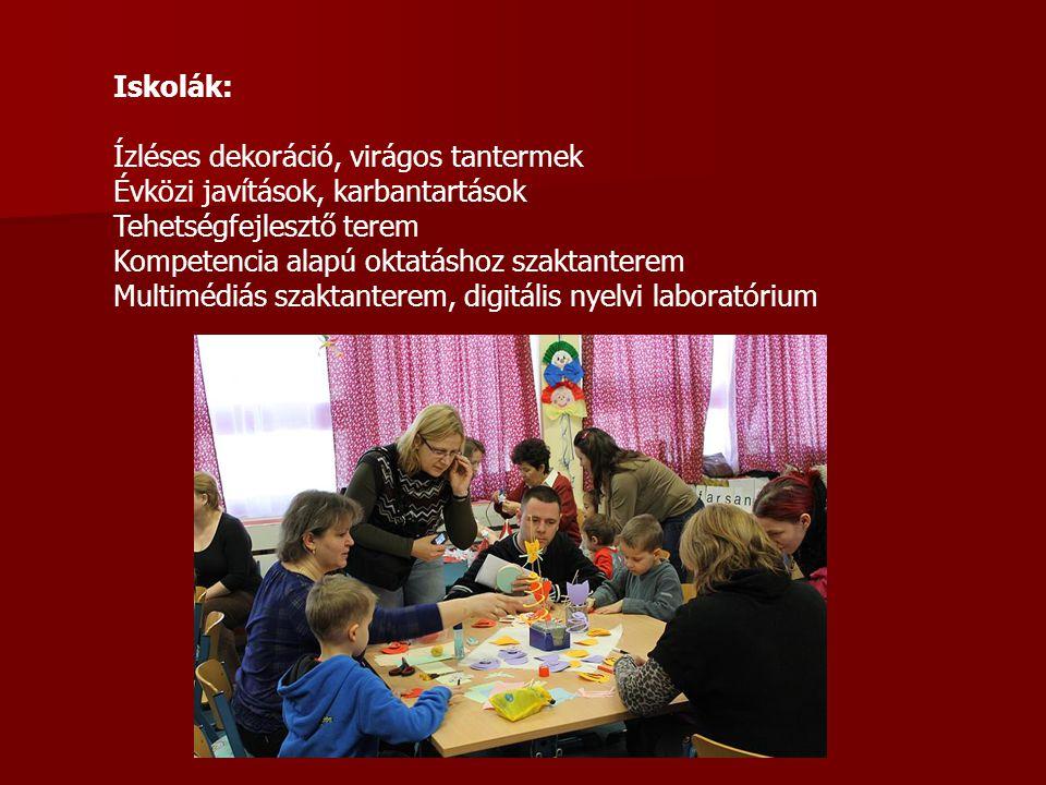 Iskolák: Ízléses dekoráció, virágos tantermek. Évközi javítások, karbantartások. Tehetségfejlesztő terem.