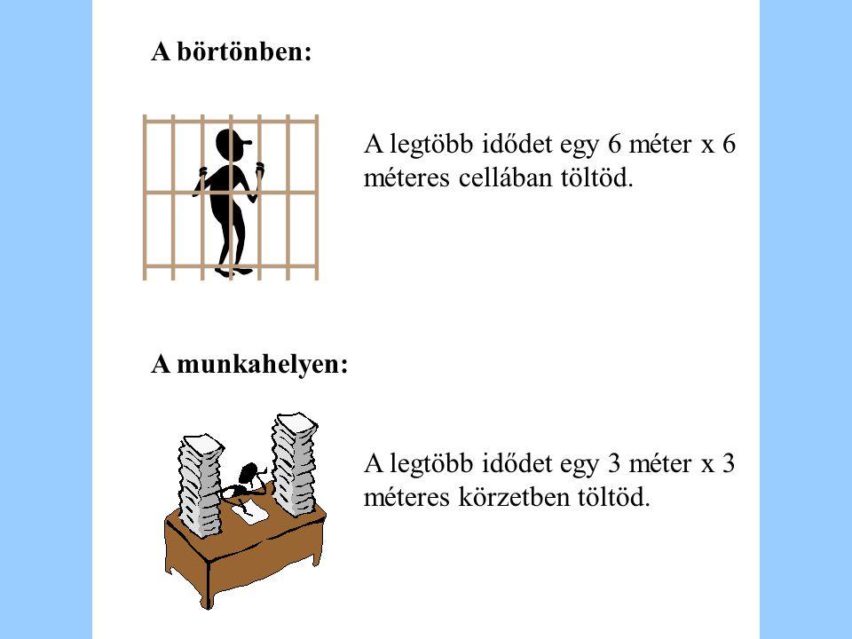 A börtönben: A legtöbb idődet egy 6 méter x 6 méteres cellában töltöd.