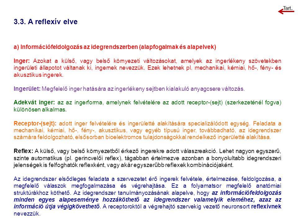 3.3. A reflexív elve a) Információfeldolgozás az idegrendszerben (alapfogalmak és alapelvek)
