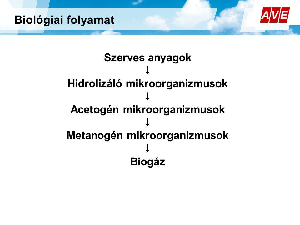 Biológiai folyamat Szerves anyagok  Hidrolizáló mikroorganizmusok
