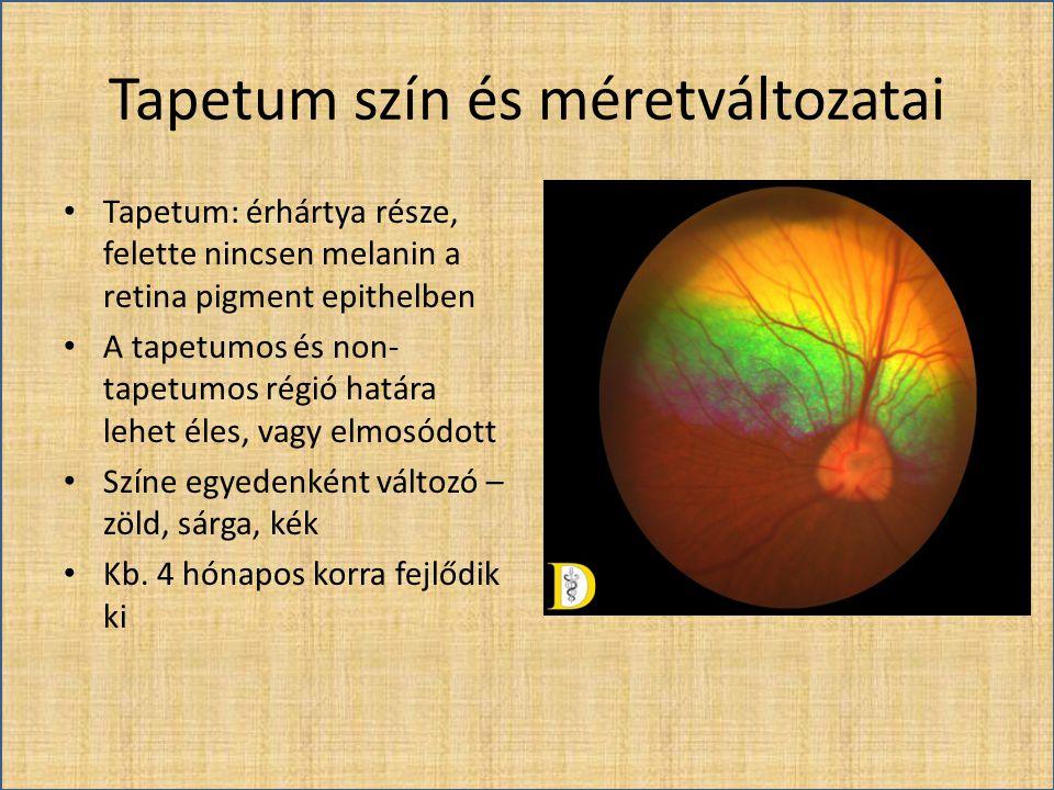 Tapetum szín és méretváltozatai