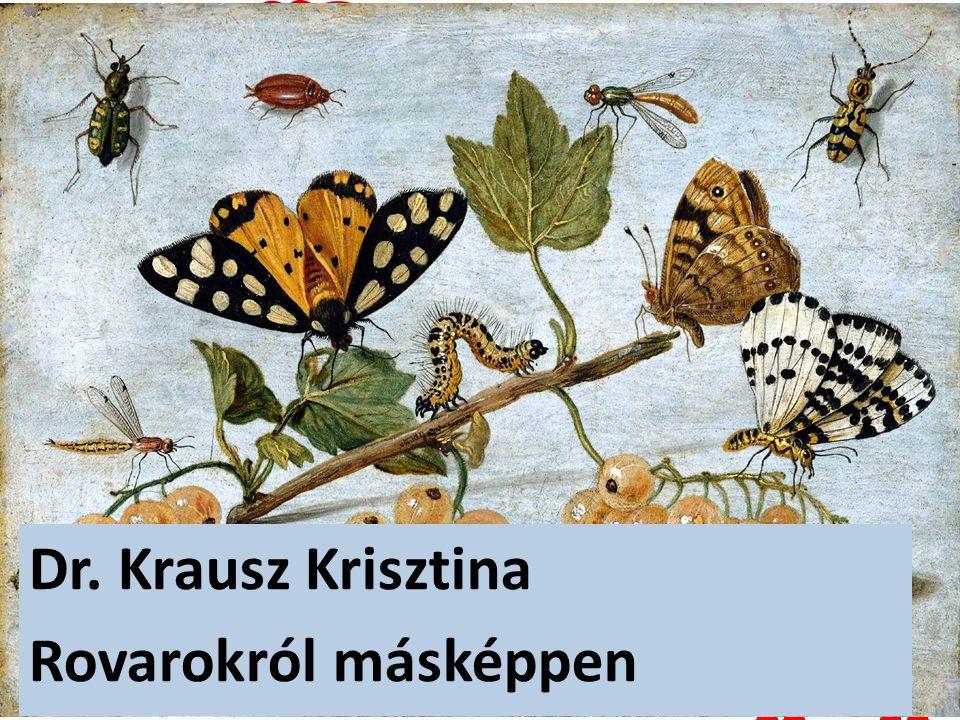 Dr. Krausz Krisztina Rovarokról másképpen