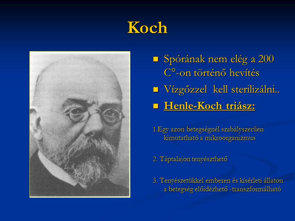 Koch Spórának nem elég a 200 C°-on történő hevítés
