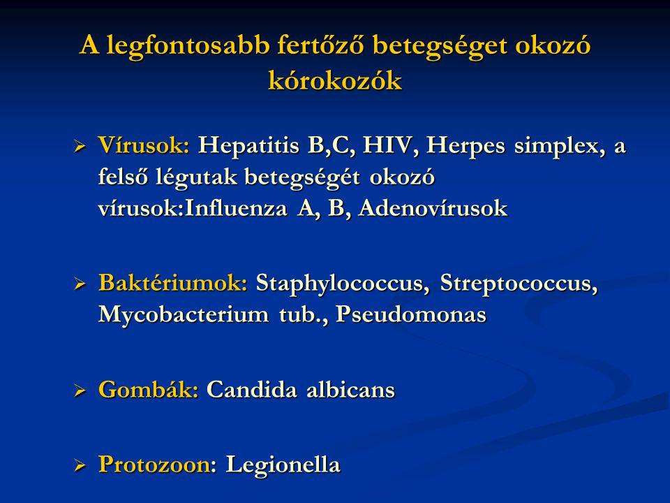A legfontosabb fertőző betegséget okozó kórokozók