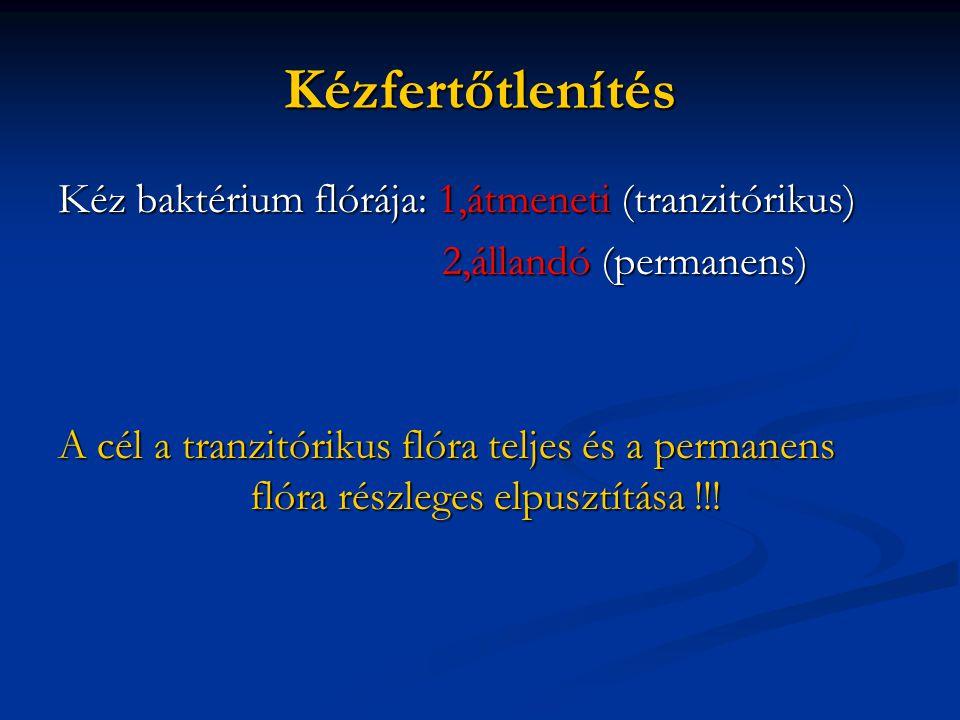 Kézfertőtlenítés Kéz baktérium flórája: 1,átmeneti (tranzitórikus)