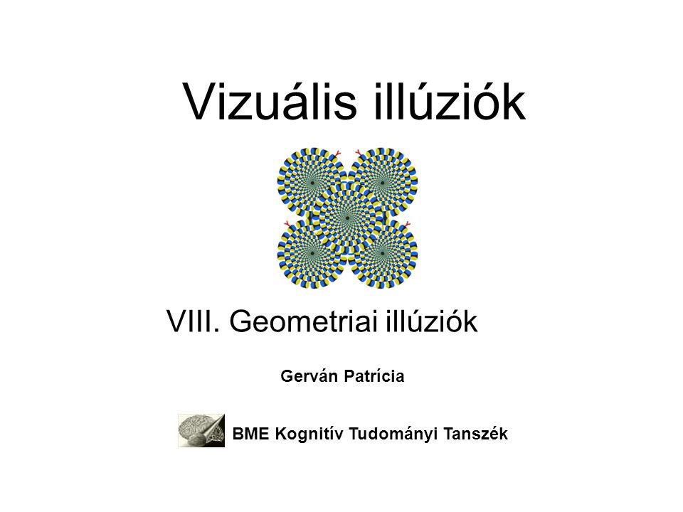 VIII. Geometriai illúziók