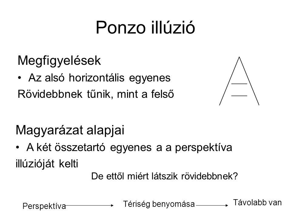 Ponzo illúzió Megfigyelések Magyarázat alapjai