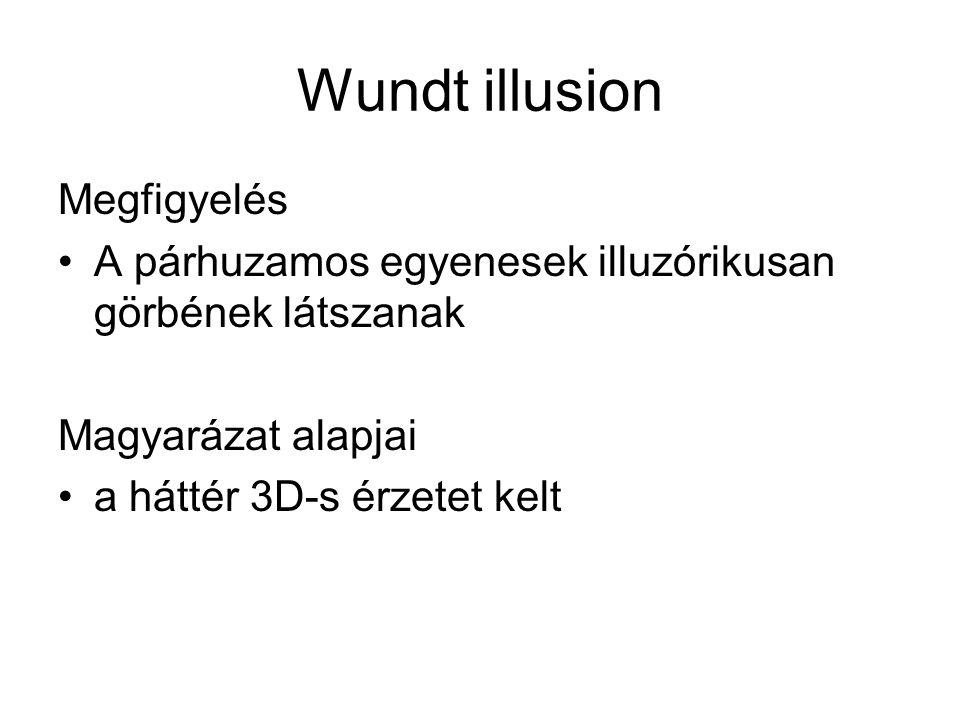 Wundt illusion Megfigyelés