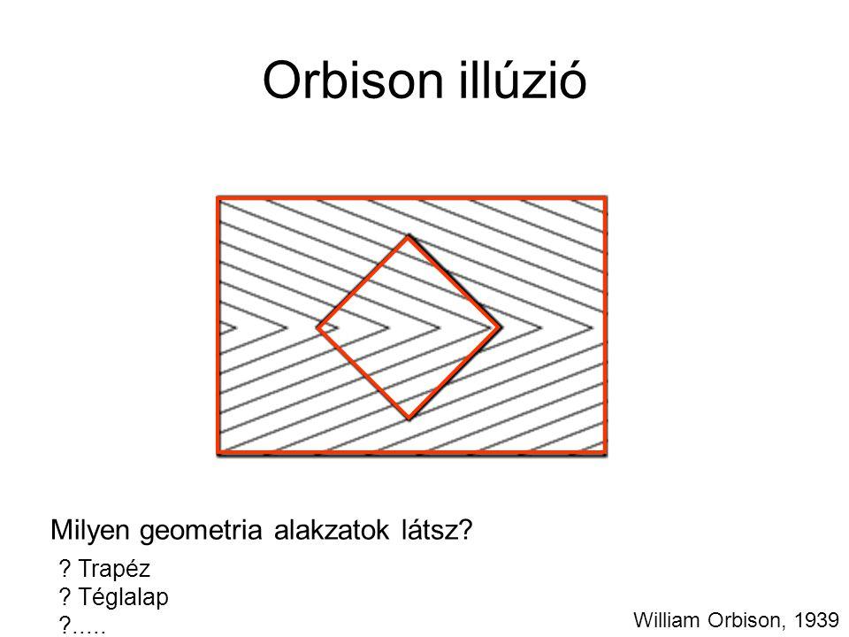 Orbison illúzió Milyen geometria alakzatok látsz Trapéz Téglalap