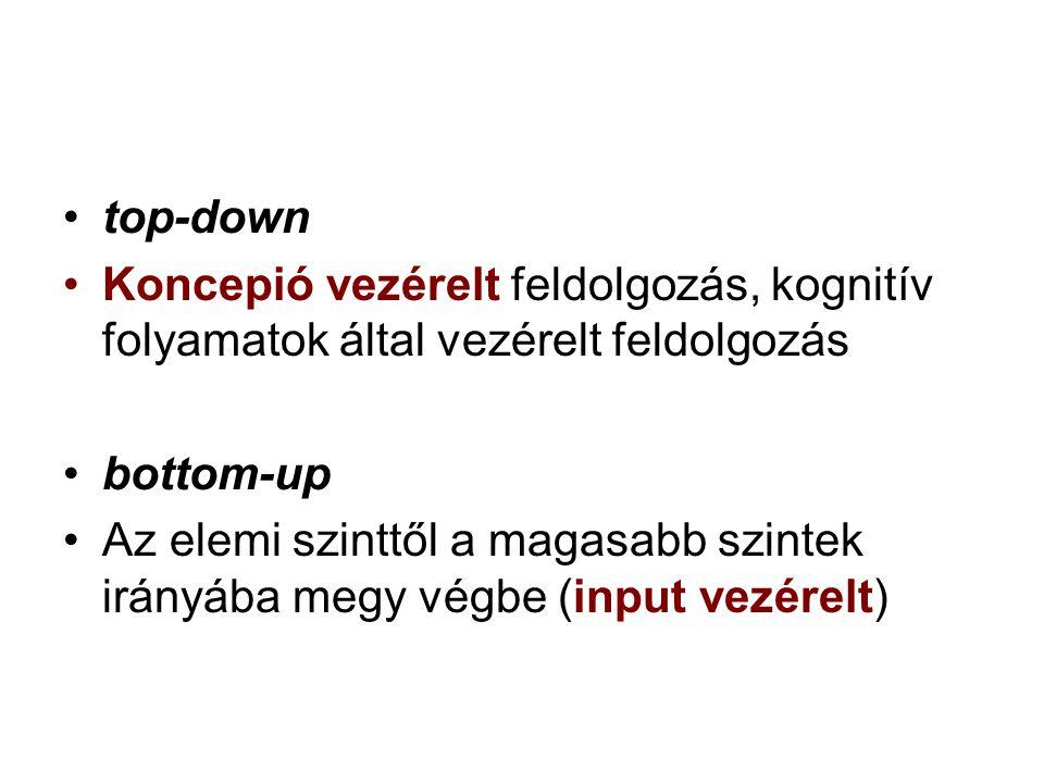 top-down Koncepió vezérelt feldolgozás, kognitív folyamatok által vezérelt feldolgozás. bottom-up.