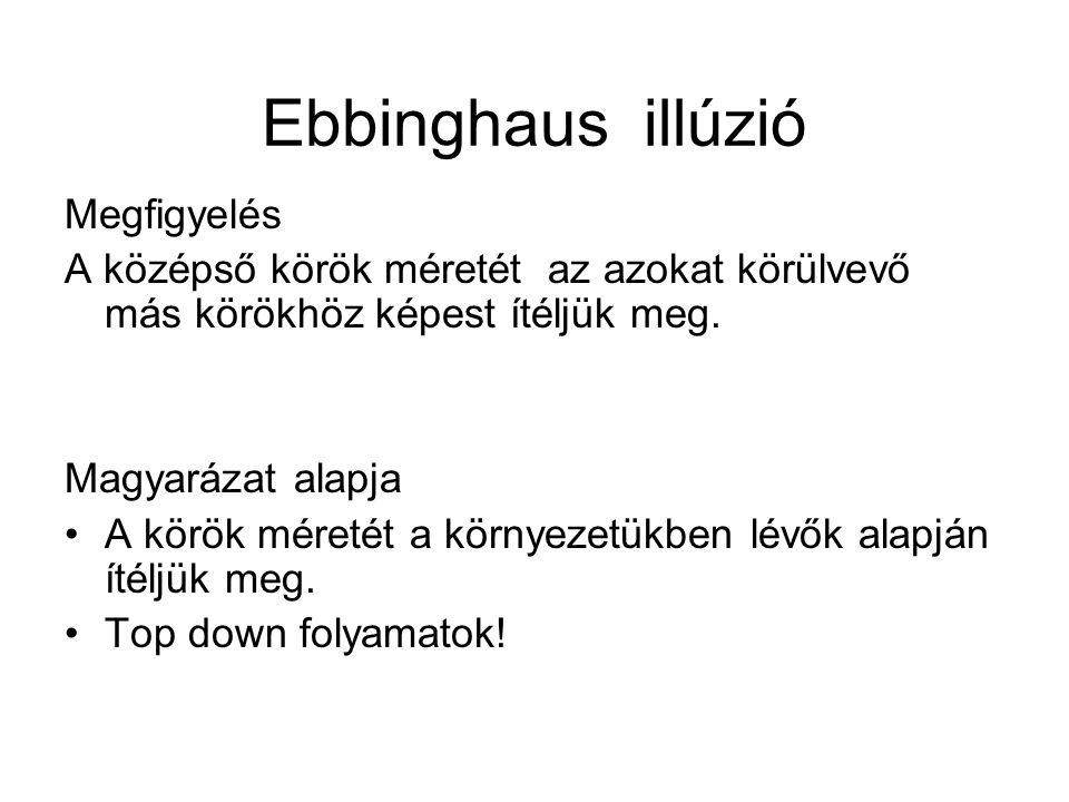Ebbinghaus illúzió Megfigyelés