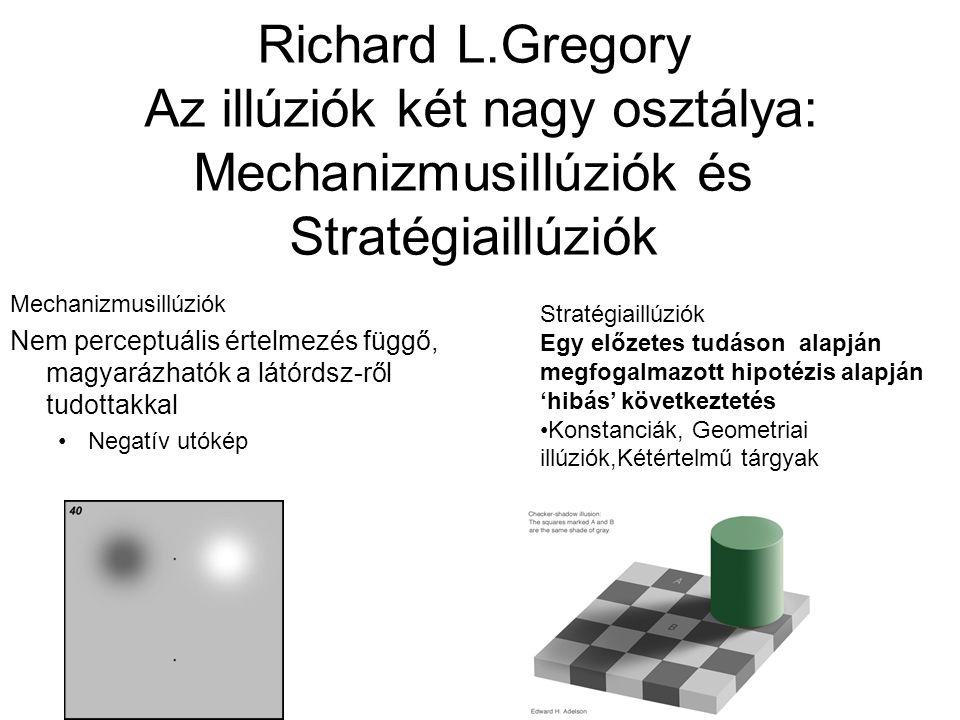 Richard L.Gregory Az illúziók két nagy osztálya: Mechanizmusillúziók és Stratégiaillúziók