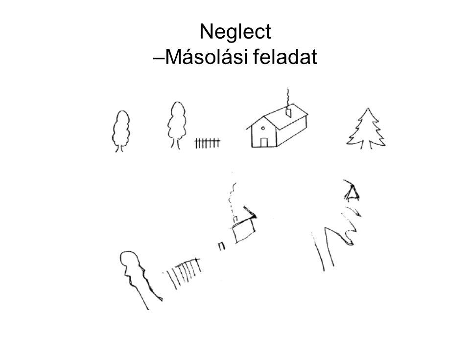 Neglect –Másolási feladat