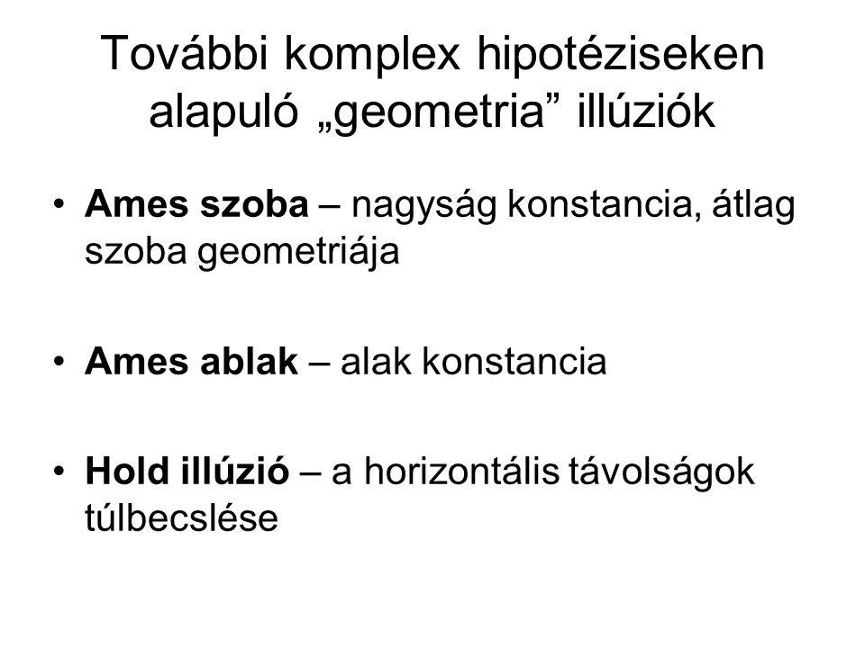 """További komplex hipotéziseken alapuló """"geometria illúziók"""