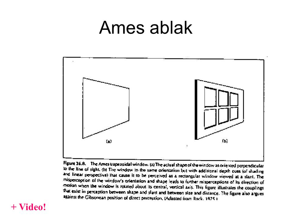 Ames ablak + Video!