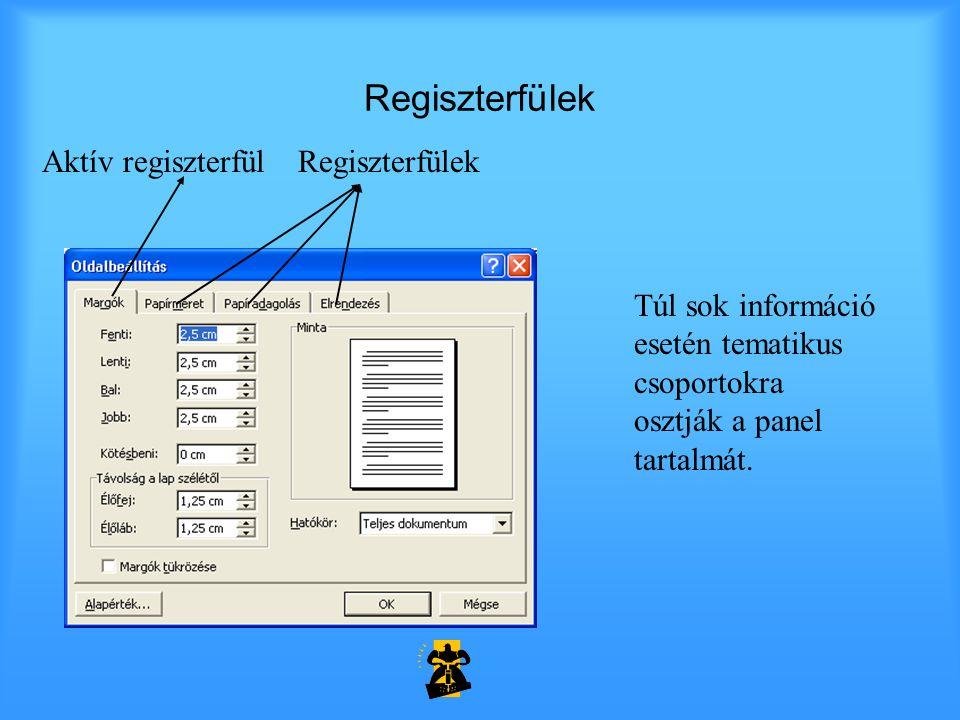 Regiszterfülek Aktív regiszterfül Regiszterfülek Túl sok információ