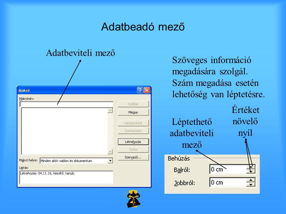 Adatbeadó mező Adatbeviteli mező Szöveges információ