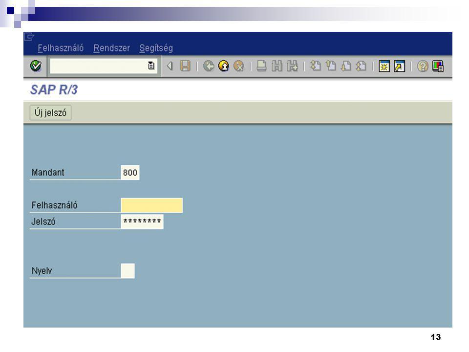 Mandatszámot (Client) - A mezőben általában a rendszerben beállított default (alapértelmezett) érték jelenik meg, de ez változtatható.