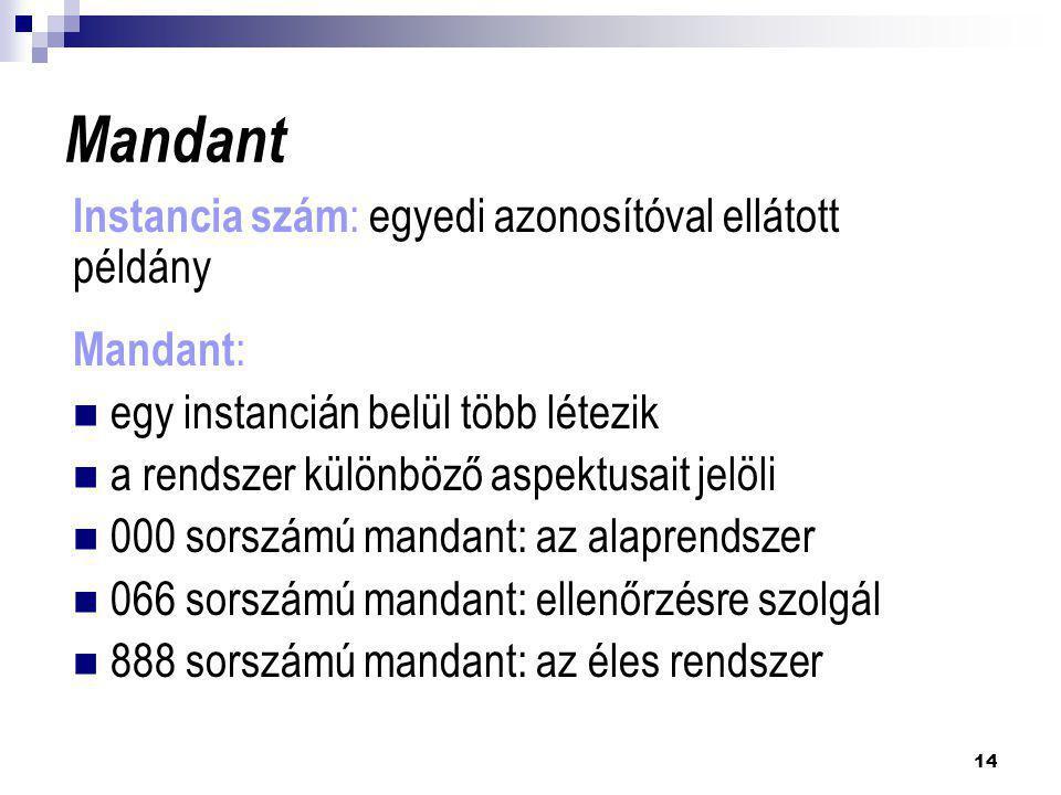 Mandant Instancia szám: egyedi azonosítóval ellátott példány Mandant: